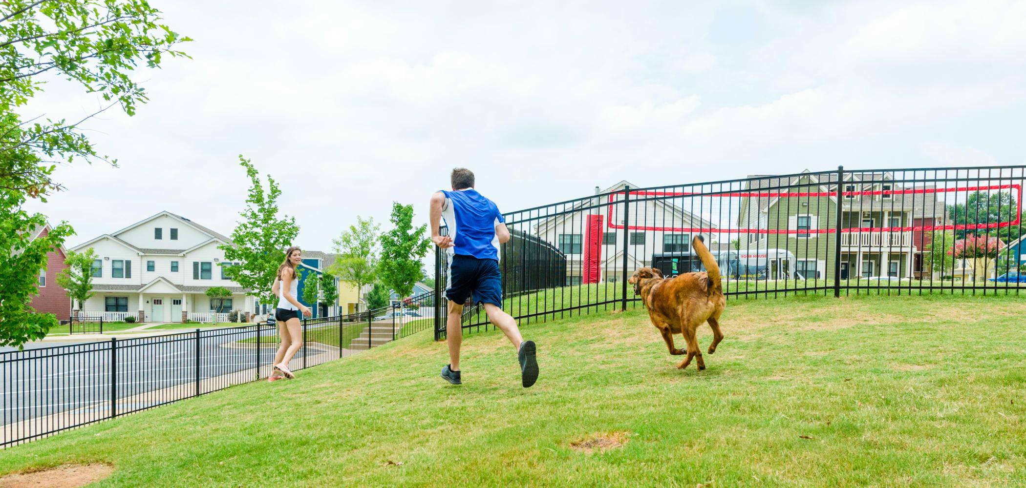 Dog park at Ikon Athens in Athens, Georgia