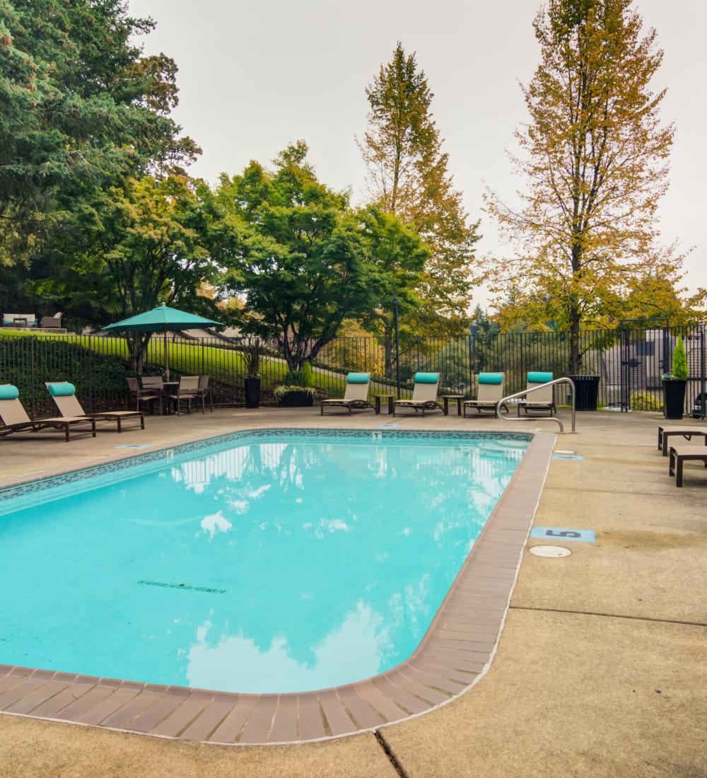 Lush landscaping and mature trees around the swimming pool at Sofi Lake Oswego in Lake Oswego, Oregon