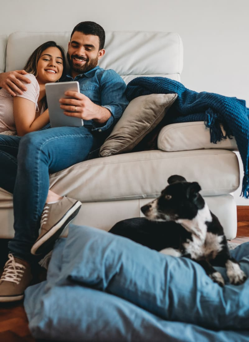 Two pets maximum per apartment at Marquis at TPC in San Antonio, Texas