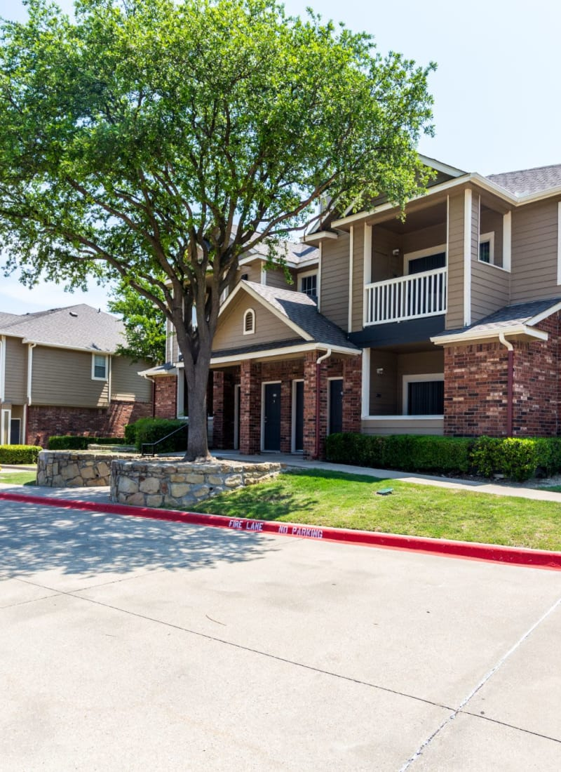 Lush landscaping at Marquis at Stonebriar in Frisco, Texas