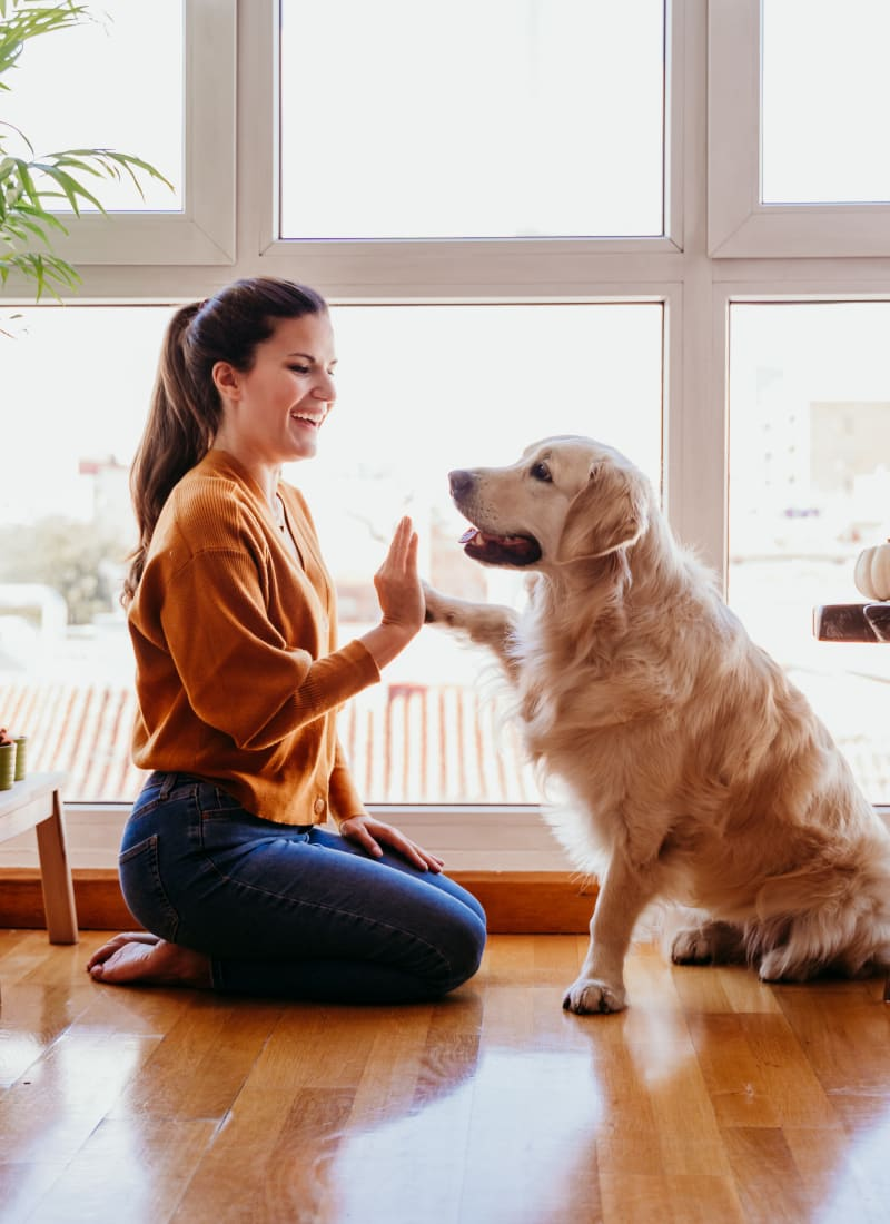 Resident high fiving her dog at Marquis at Canyon Ridge in Austin, Texas