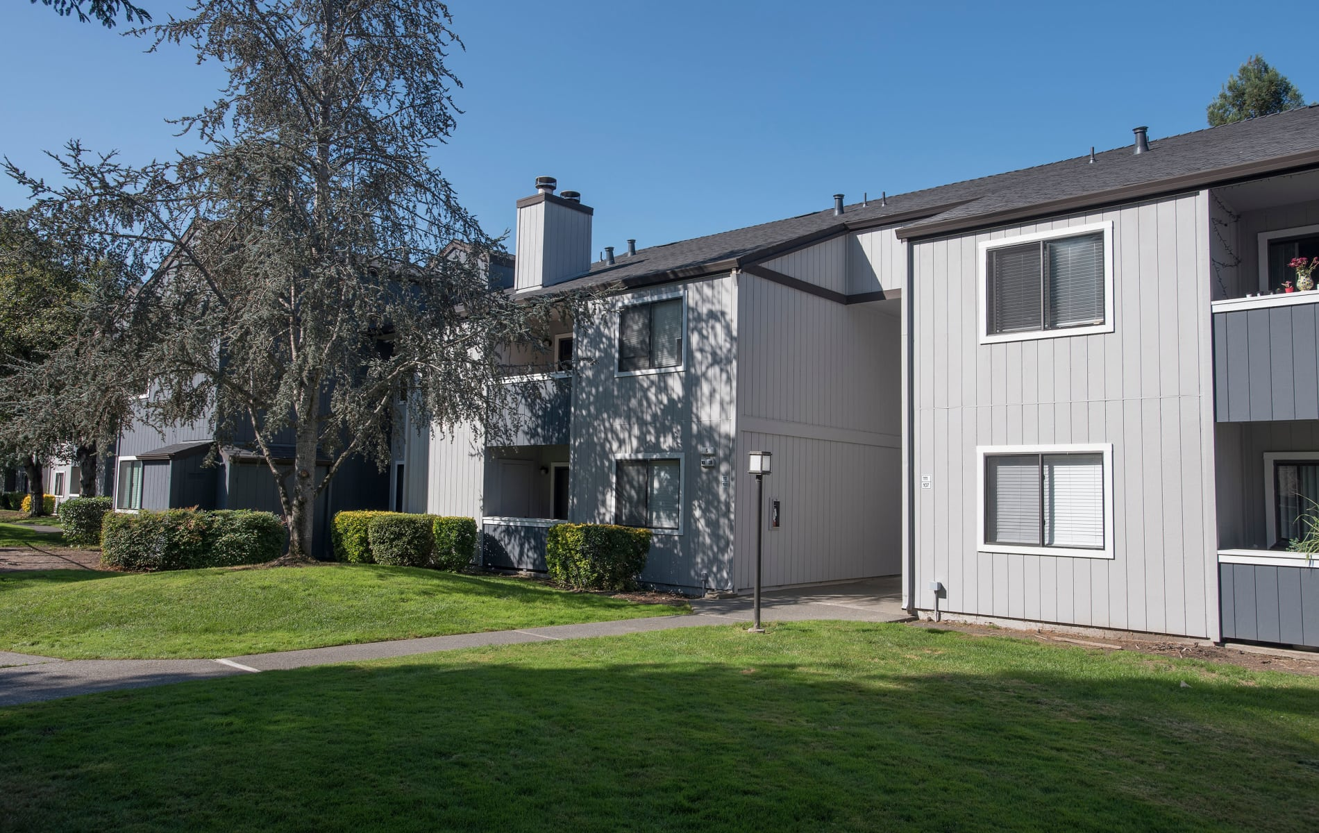 Apartments in Rohnert Park, CA