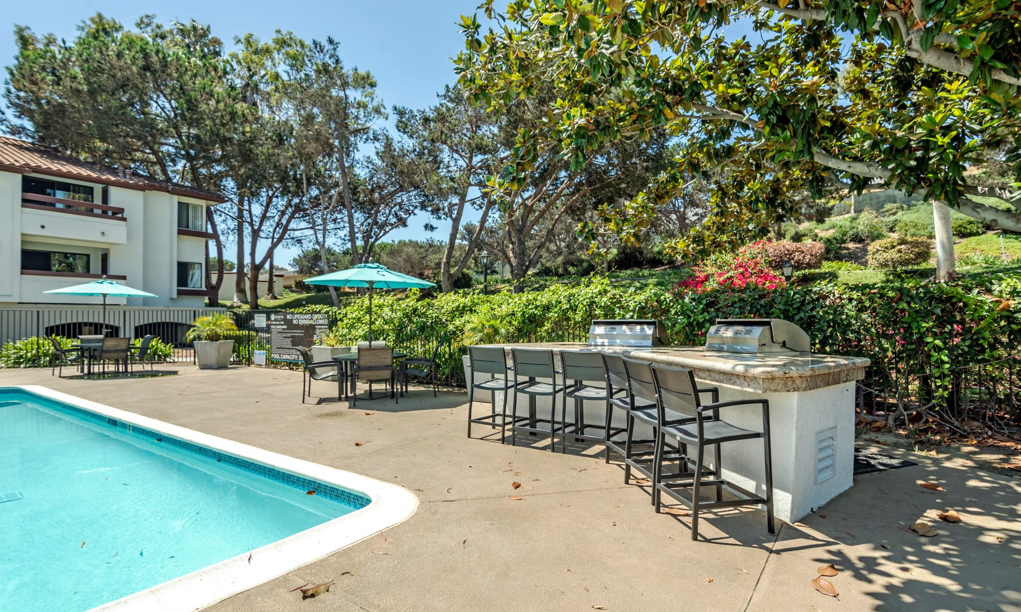 Pool at Avana La Jolla Apartments