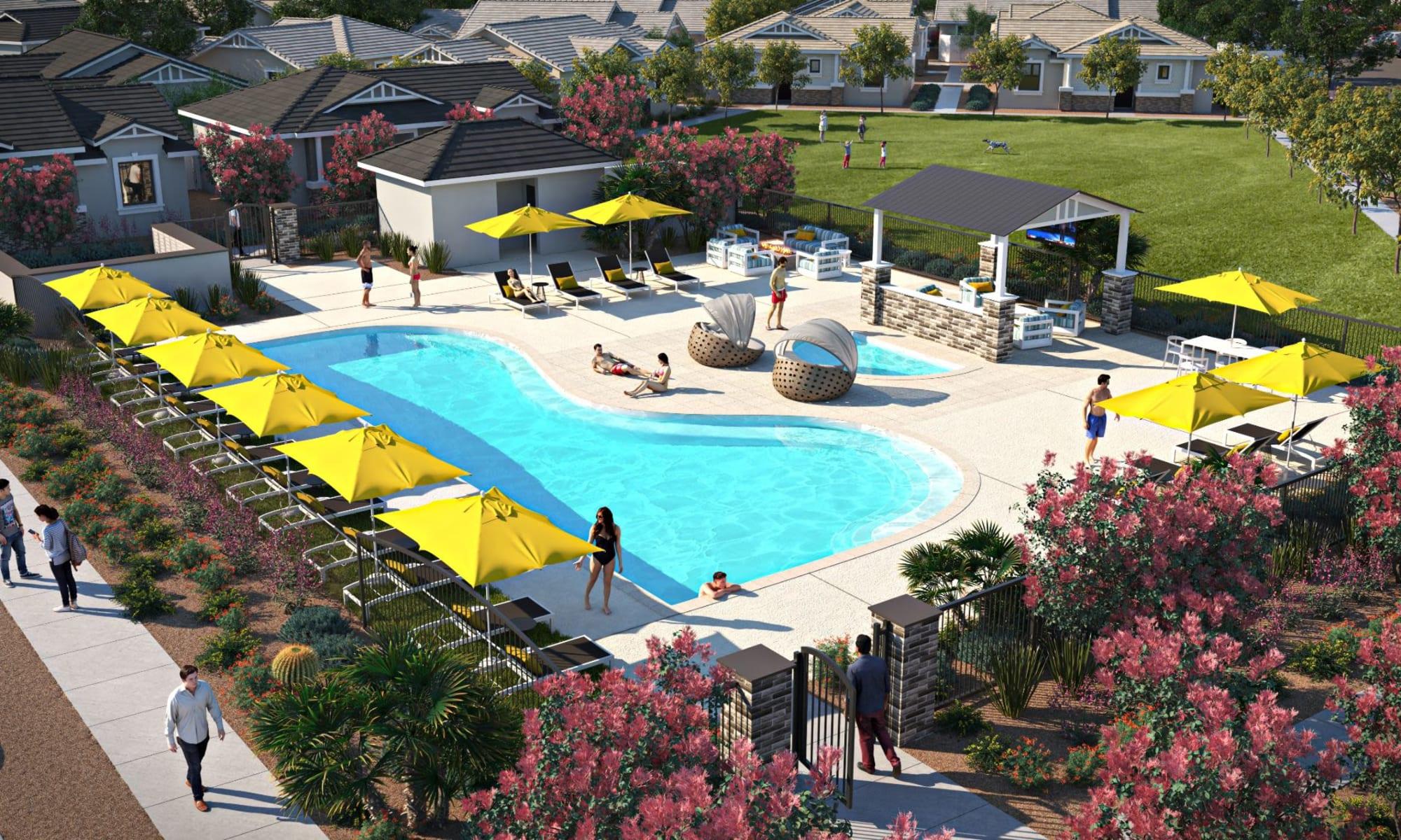 Rendering of resort style swimming pool at TerraLane at South Mountain in Phoenix, Arizona
