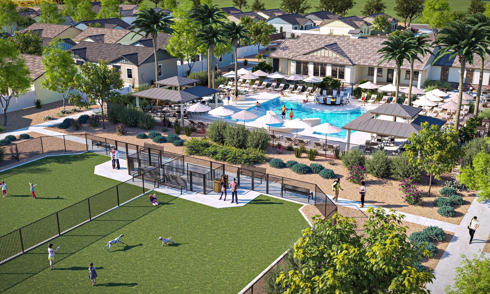 Resort-style pool & on-site dog park at Estia Surprise Farms in Surprise, Arizona