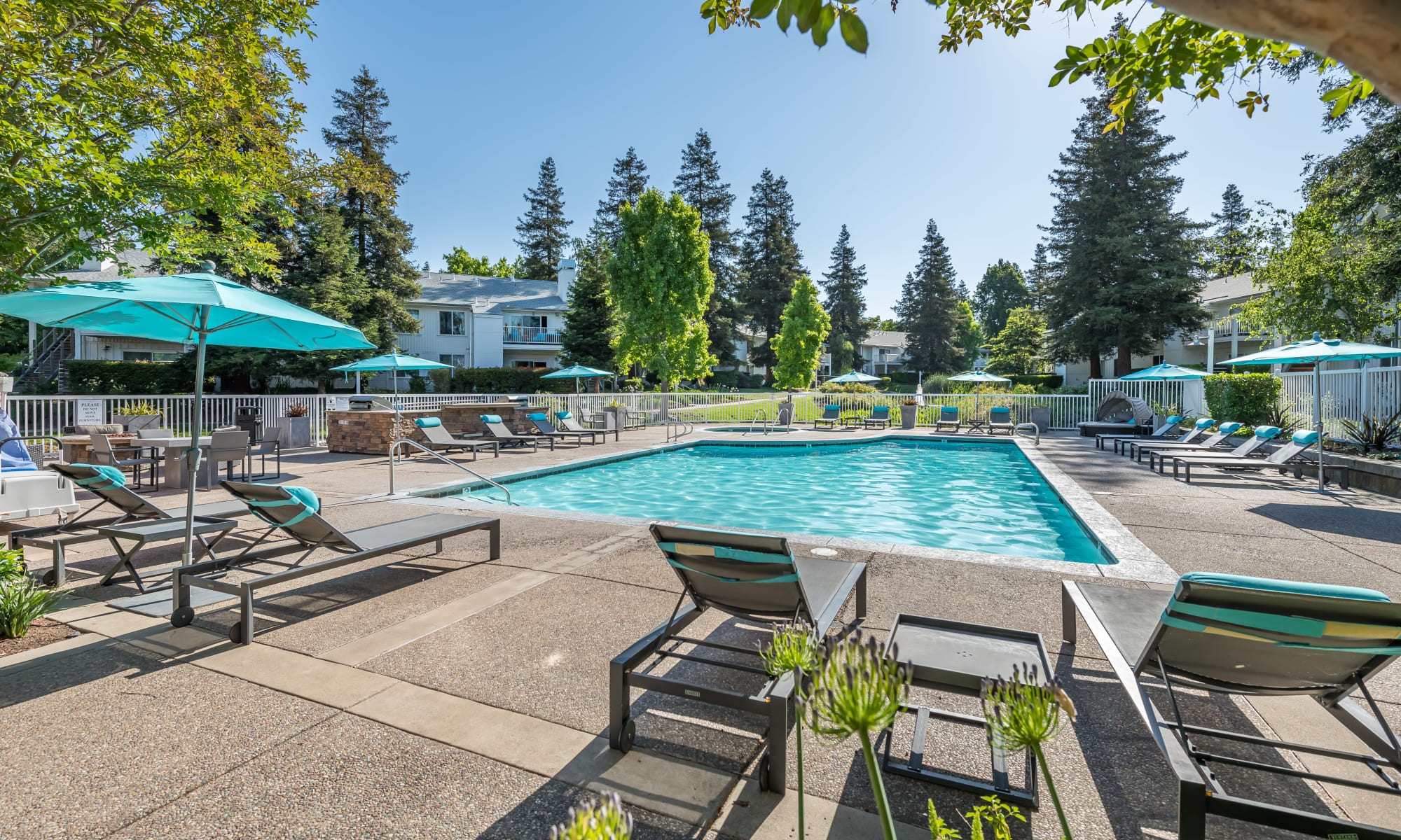Reviews of Cotton Wood Apartments in Dublin, California