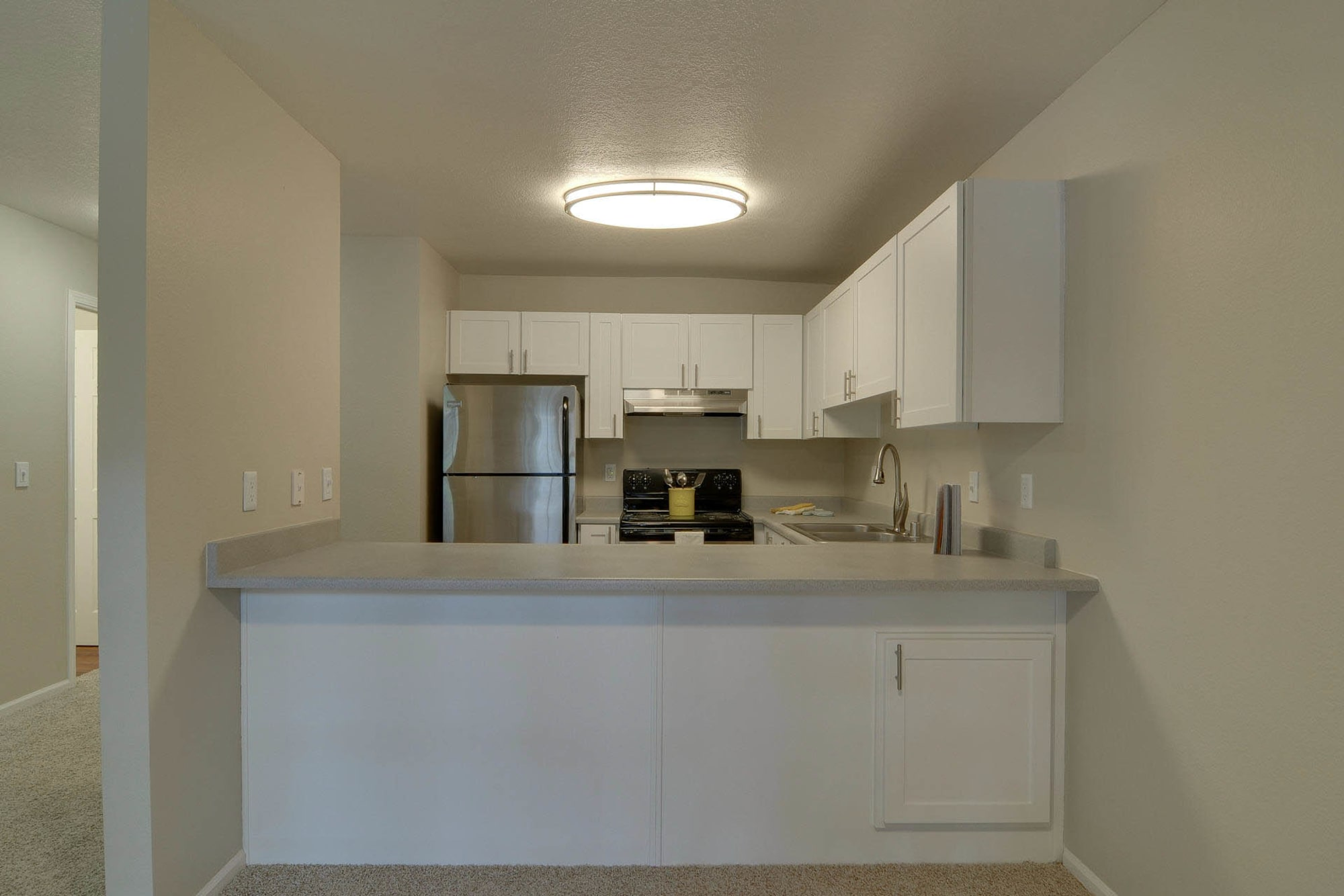 White Renovation Kitchen