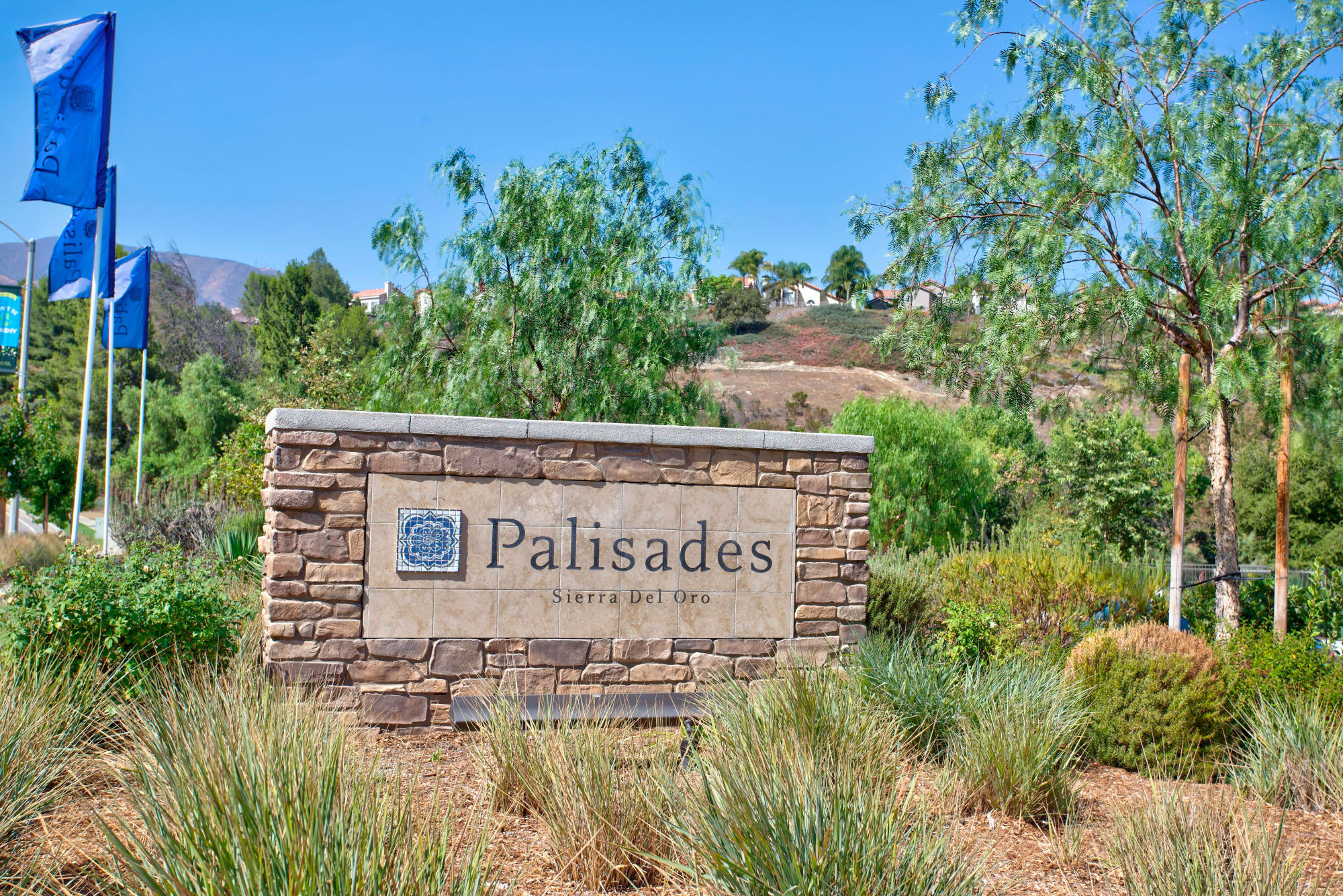 Monument Sign at Palisades Sierra Del Oro