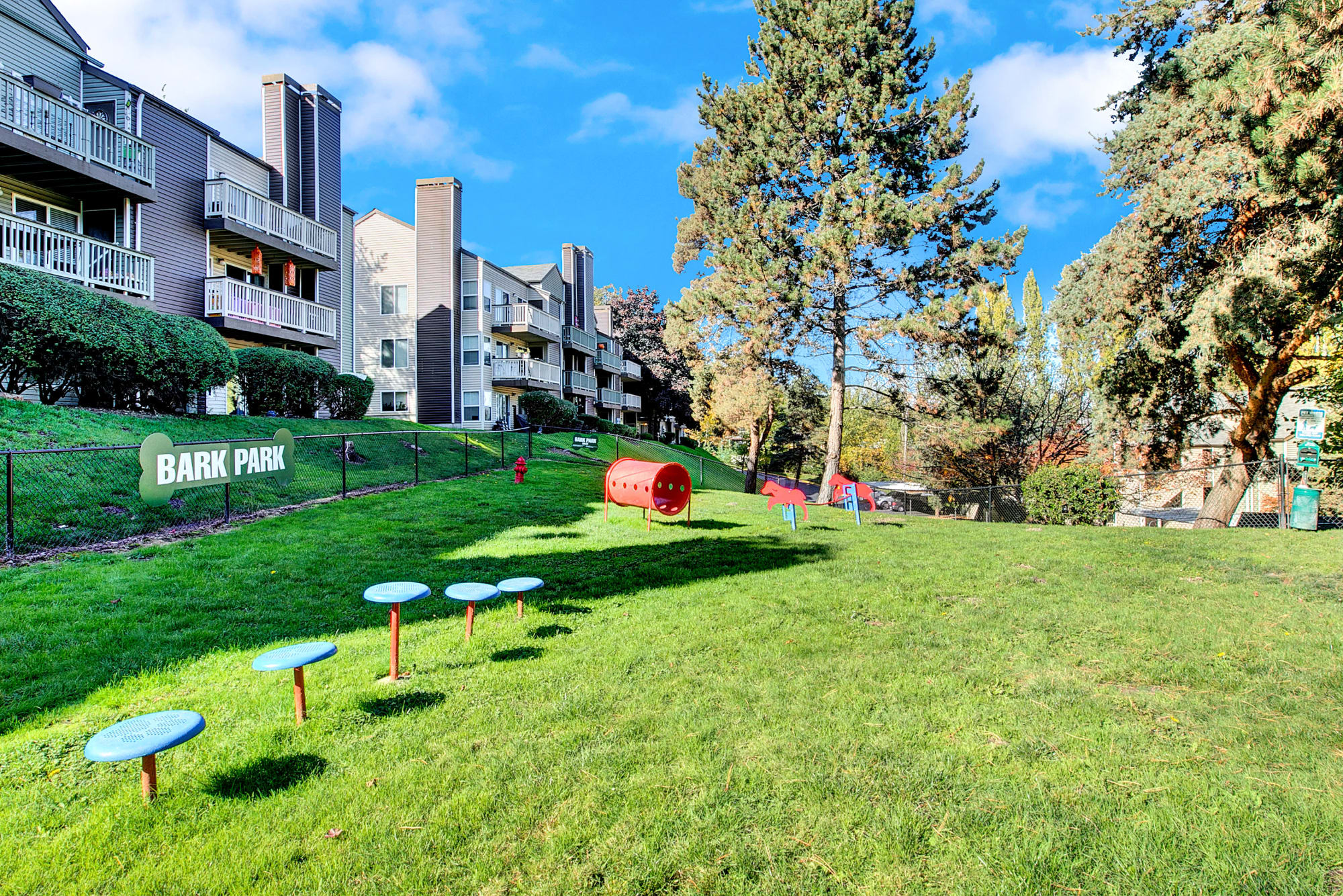 Onsite off-leash dog park at Park South Apartments in Seattle, Washington