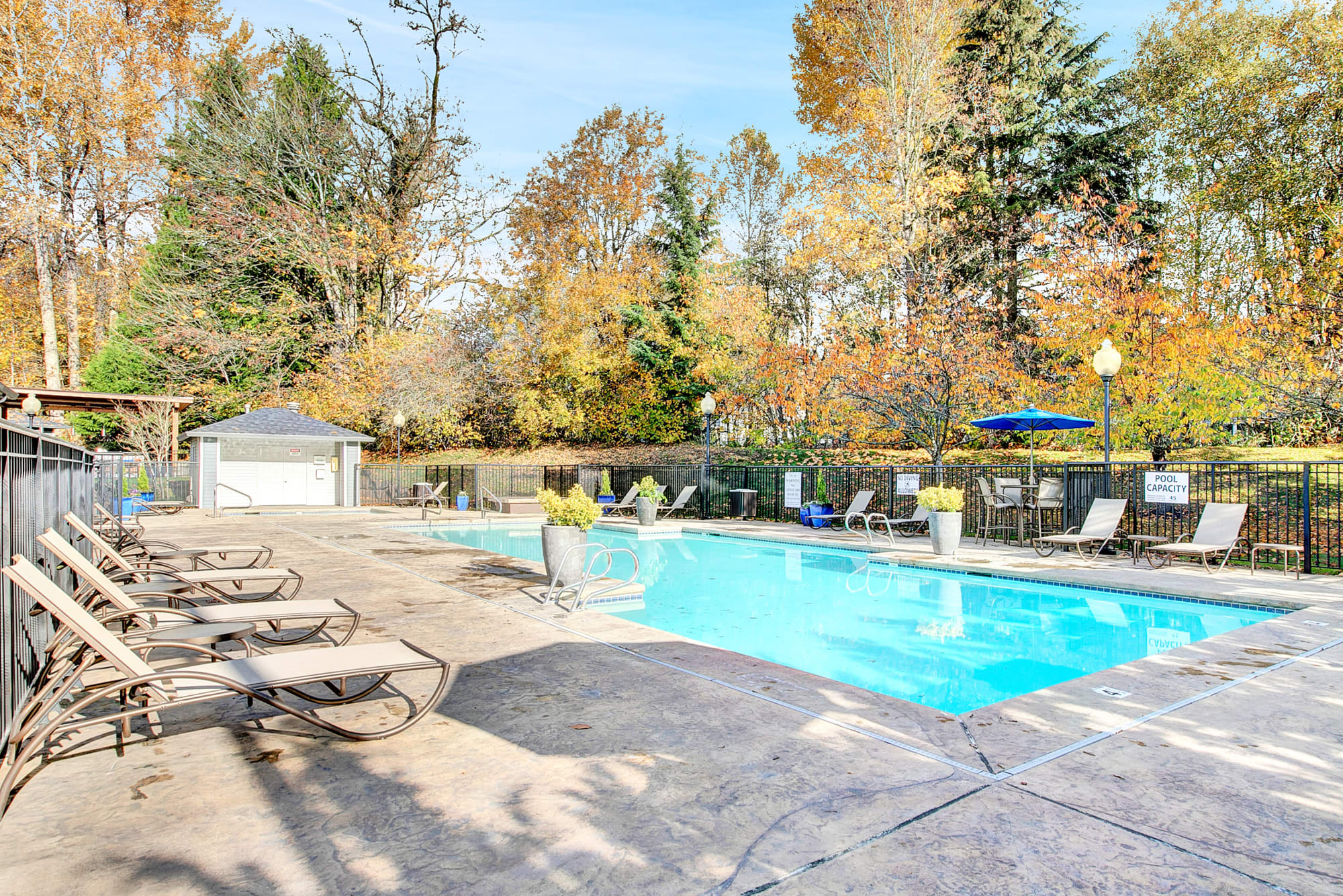 Pool at Pebble Cove Apartments in Renton