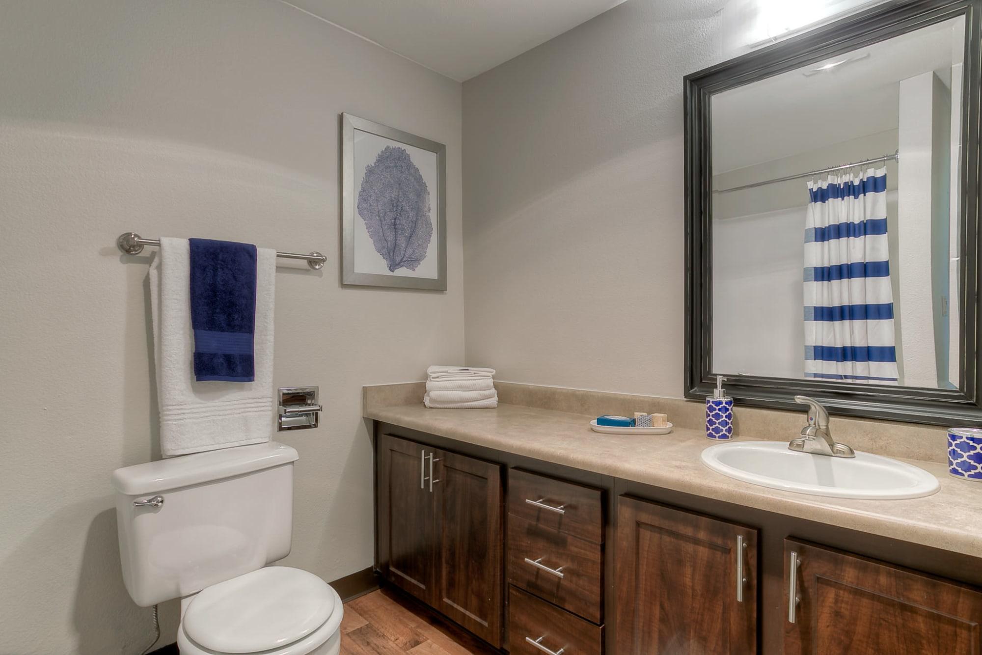 Bathroom at Newport Crossing Apartments
