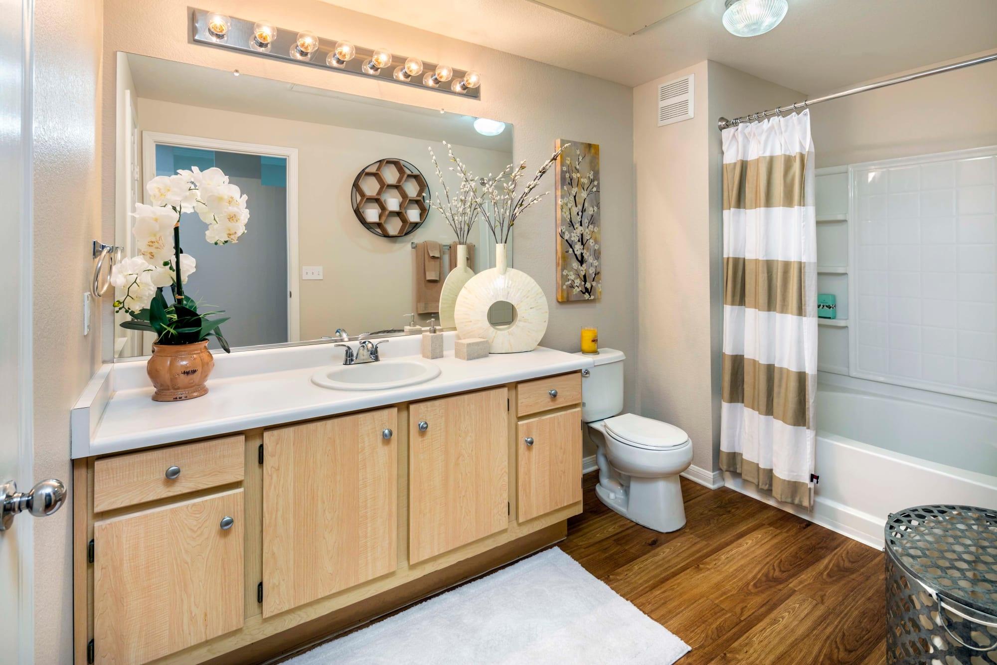 A well decorated bathroom at Miramonte and Trovas in Sacramento, California