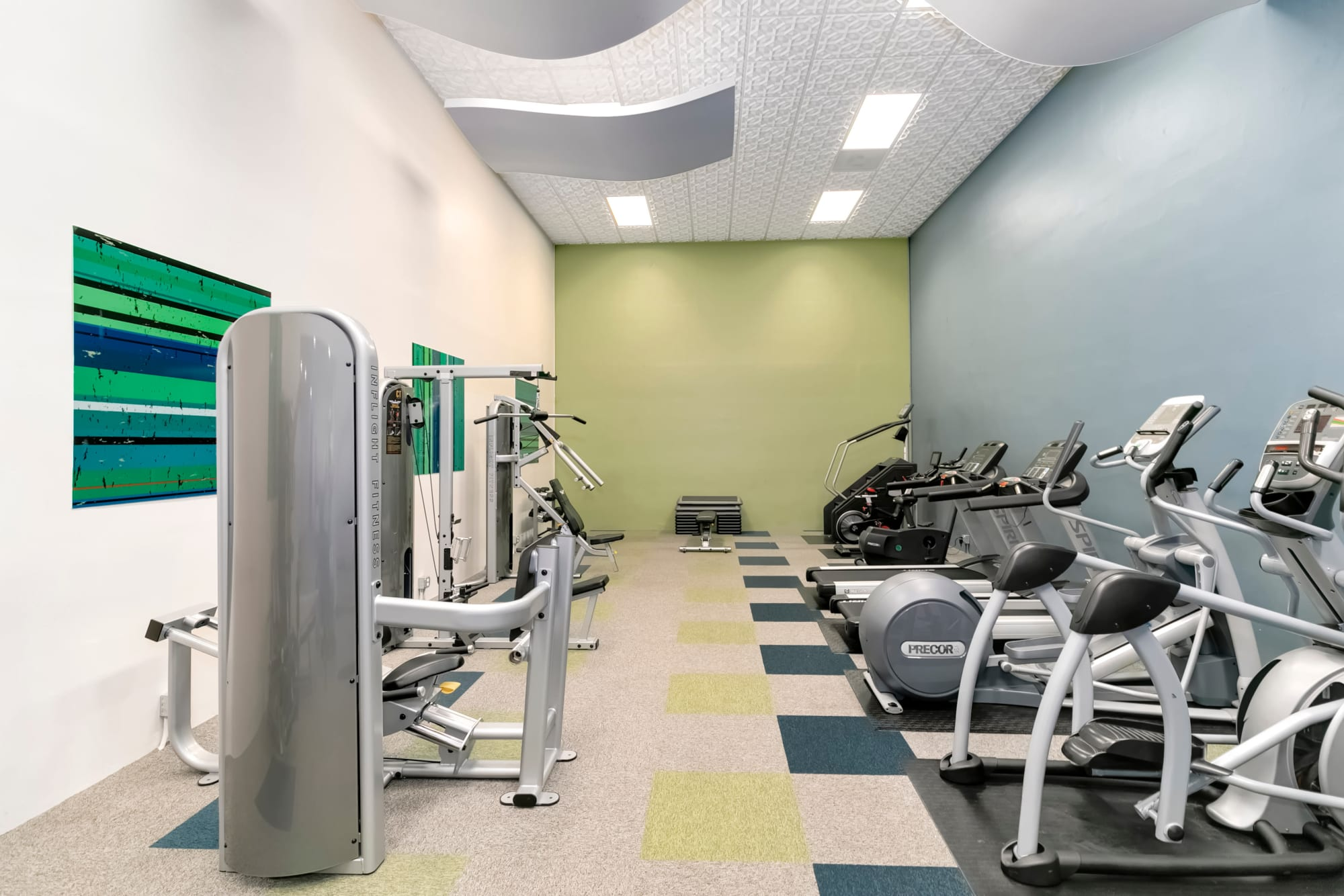 Fully Equipped Fitness Center with Cardio and Weight Machines