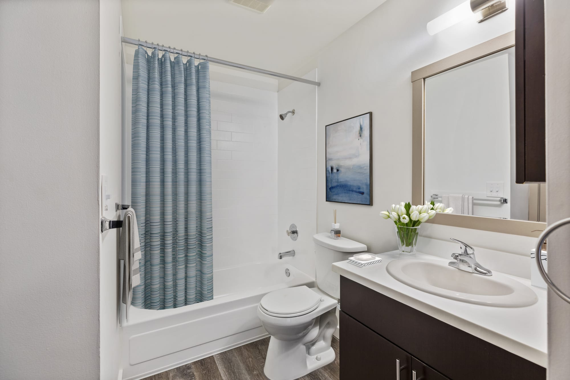 Well-Sized bathroom at Elan 41 Apartments in Seattle