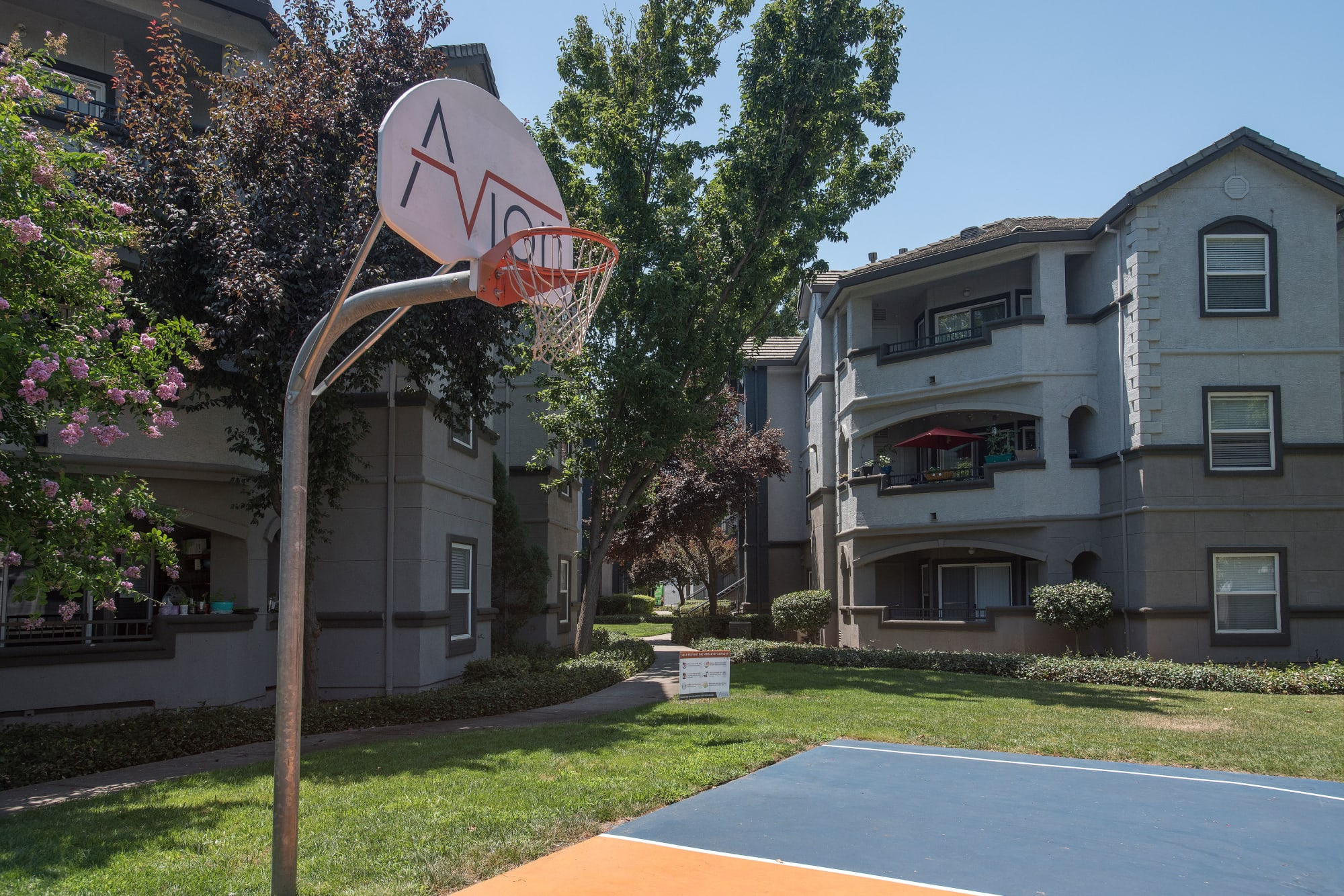 Community basketball court at Avion Apartments in Rancho Cordova, California