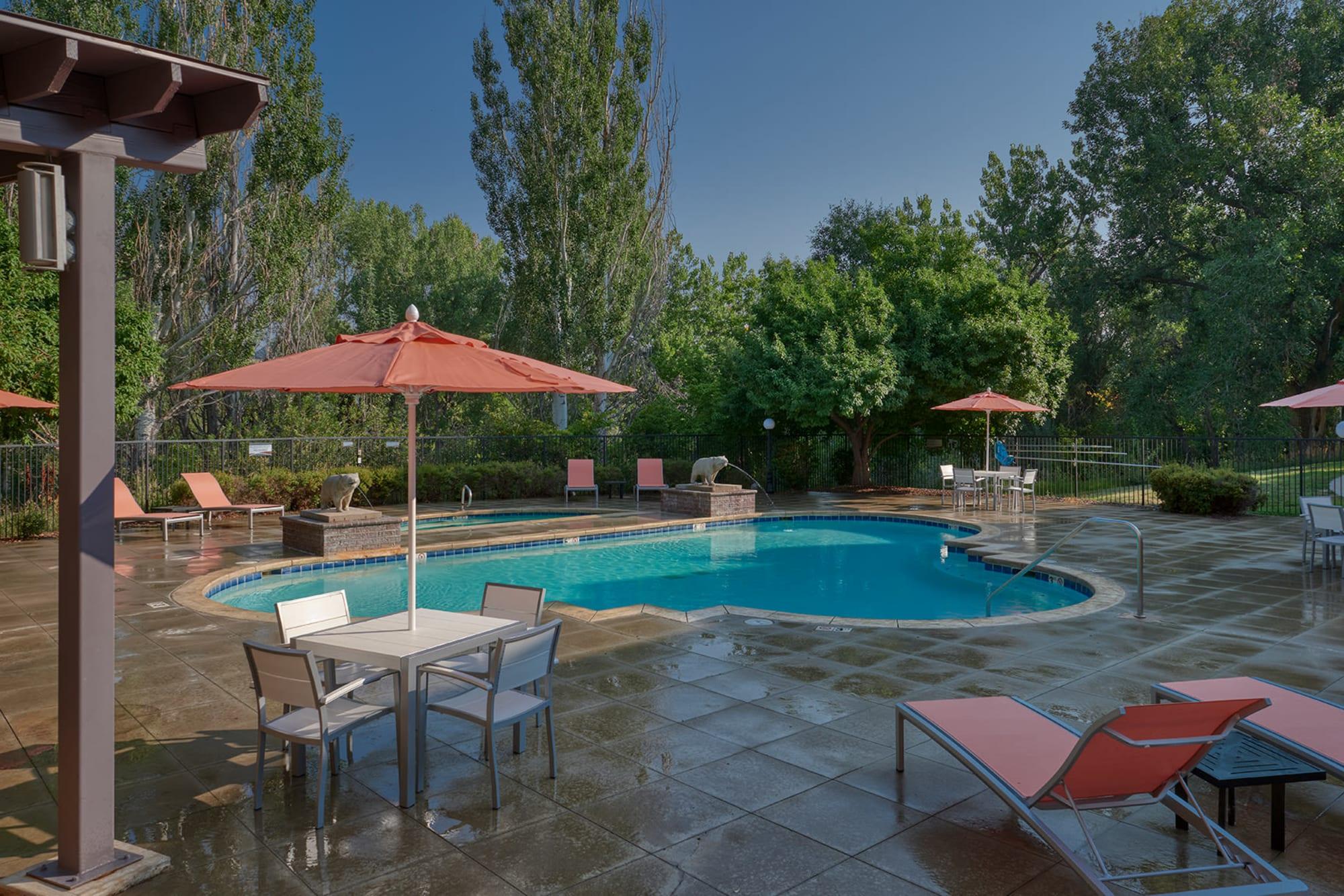 Pool at The Crossings at Bear Creek Apartments in Lakewood, Colorado