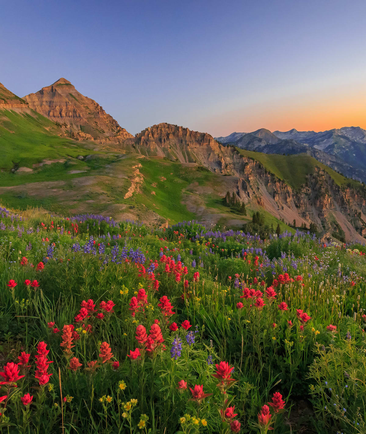 Wasatch Mountains near Alpine Meadows Apartments in Sandy, Utah
