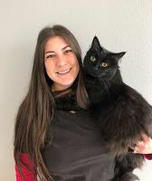Sam at Value Pet Clinic - Renton in Renton, WA