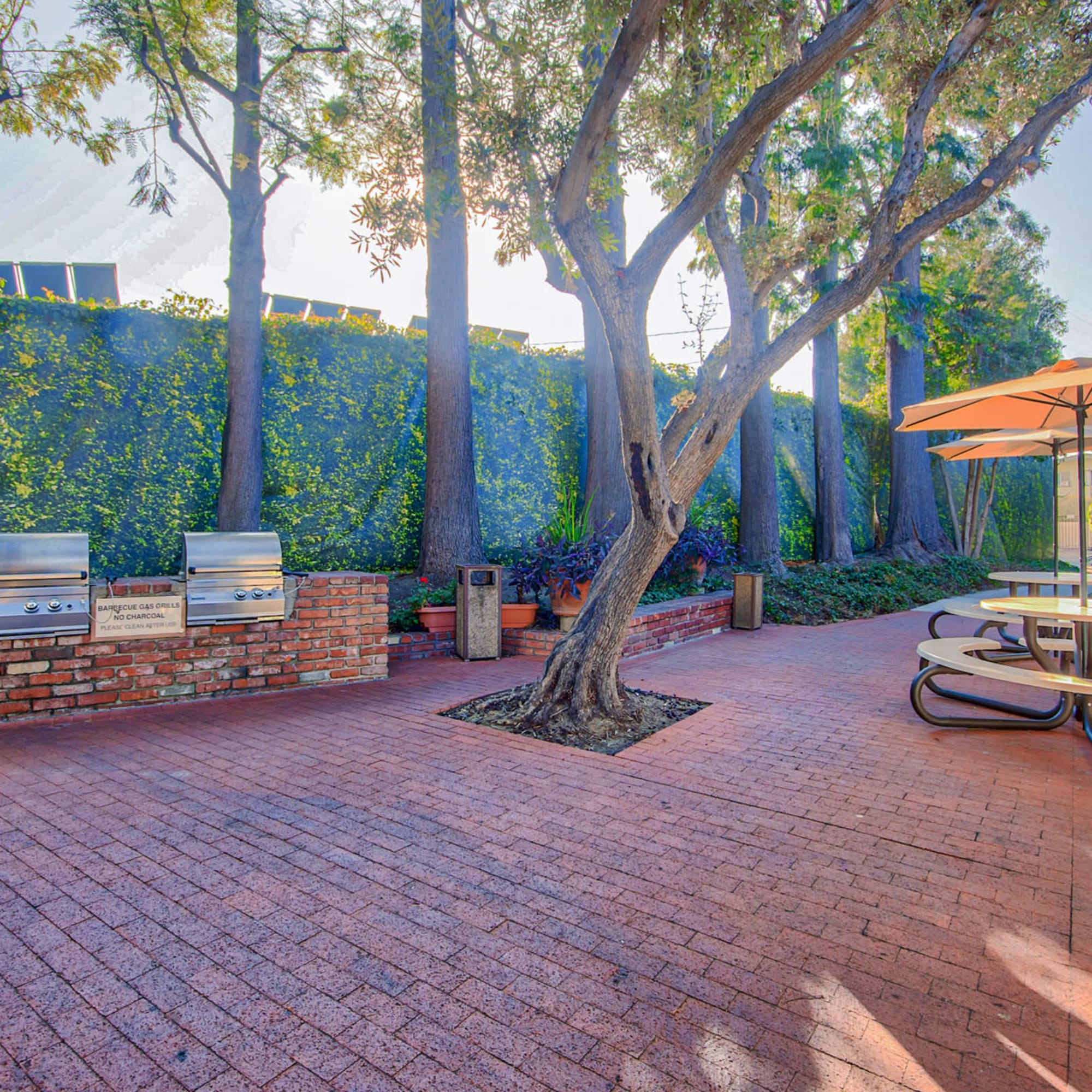 Barbecue area with a brick courtyard, gas grills and mature trees at Villa Vicente in Los Angeles, California