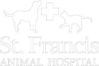 St. Francis 24hr Animal Hospital