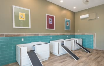 Pet spa at our luxury apartments in Fredericksburg, Virginia