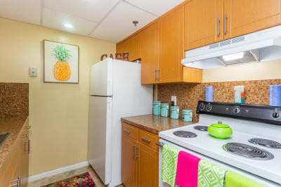 Kitchen at Forest Place Apartments in Miami