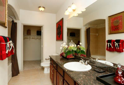 Granite countertops and plenty of space in bathroom of model home at Villas at Bunker Hill