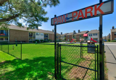 Onsite dog park at Ridgeview Place in Irving, Texas