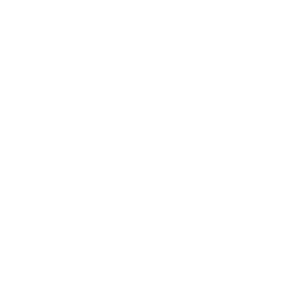 The General Muir logo