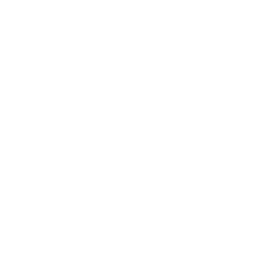 Art of Wax logo