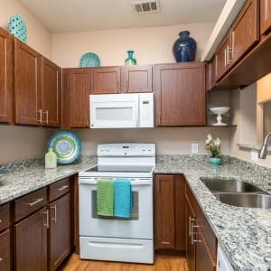 Floor Plans at El Lago Apartments in McKinney, Texas