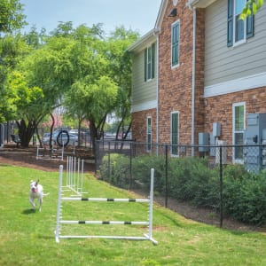 Neighborhood near The Lodge at Shavano Park in San Antonio, Texas