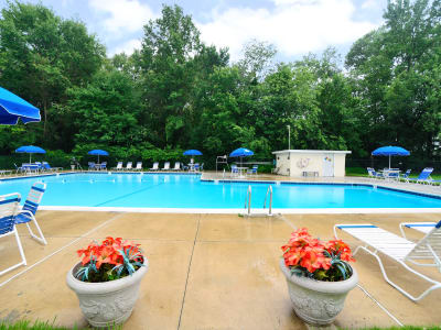 Sundeck and swimming pool area at Nieuw Amsterdam Apartment Homes in Marlton, NJ