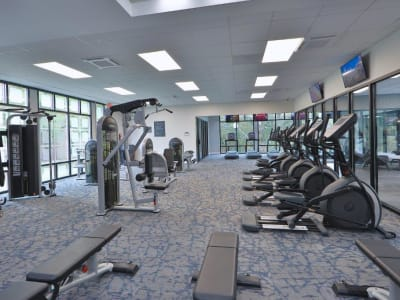 Amenities at Stoneridge at Mark Center Apartment Homes