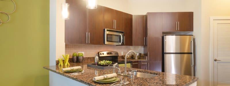 Beautiful kitchen at Palette at Arts District in Hyattsville, Maryland