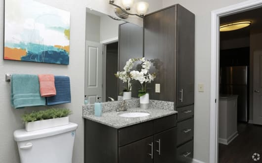 Example bathroom at apartments in Ocoee