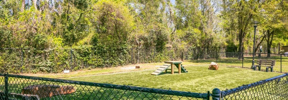 A large onsite dog park at The Fuse at Park Row in Houston, Texas