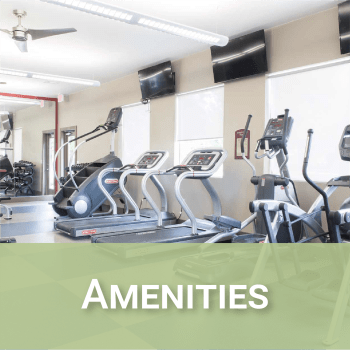 Amenities at Reserve at Kirkwood in Cedar Rapids, Iowa