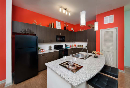 Black appliances in model home's gourmet kitchen at Perimeter Lofts in Charlotte, North Carolina