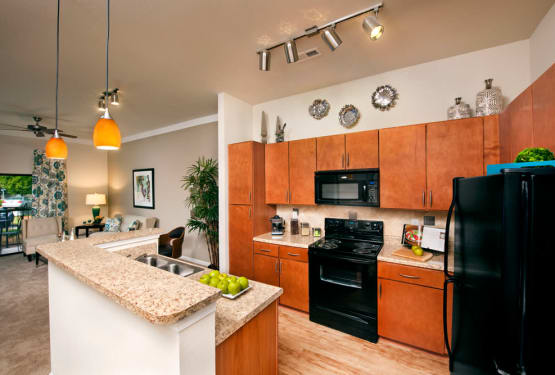 Gourmet kitchen at Perimeter Lofts in Charlotte, North Carolina