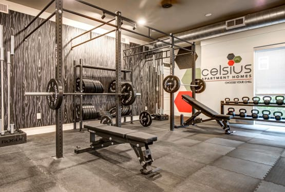 Weights offered at Celsius