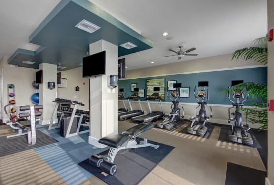 Gym equipment at The Courtney at Lake Shadow in Orlando, Florida
