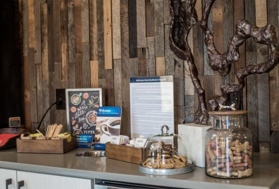 Cookies and dog treats at Lodge at Croasdaile Farm
