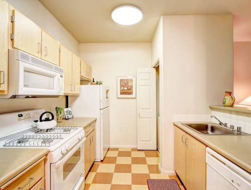 Spacious kitchen with plenty of cabinet space at Laguna Creek Apartments in Elk Grove, California