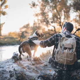 View the pet policy for The Trails at Canyon Crest in Riverside, California