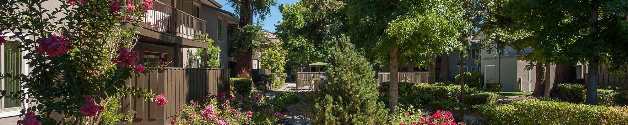 Resident perks at Flora Condominium Rentals in Walnut Creek, California
