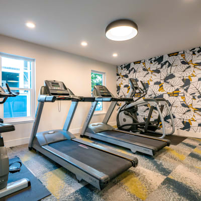 Treadmills and other cardio machines in the fitness center at Terra Martinez in Martinez, California