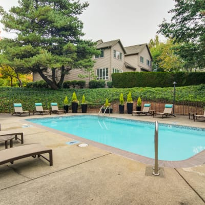 Chaise lounge chairs and mature trees around the swimming pool at Sofi Lake Oswego in Lake Oswego, Oregon