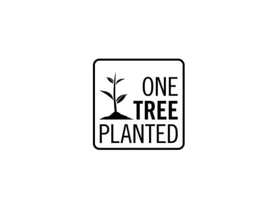 One tree planted at StorQuest Self Storage in Santa Monica, CA