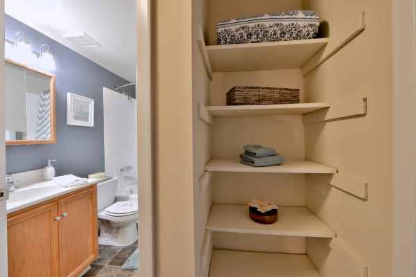 Enjoy apartments with a spacious bathroom at Taylor Park Apartment Homes